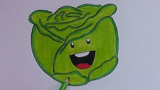 Como dibujar y pintar paso a paso a Lechuga - How to draw and paint step by step Lettuce