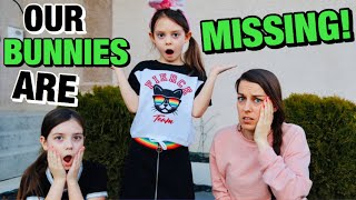 OUR BUNNIES ARE MISSING!! TOY SCAVENGER HUNT with EASTER BUNNY IRL! Funny Bunny Sunday #9