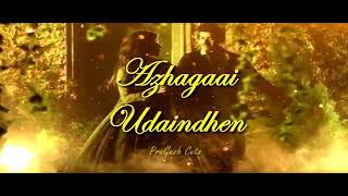 Neethane en nenjai thattum satham|| Mersal song |2017