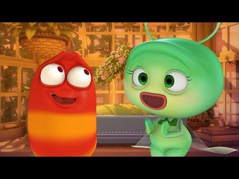 LARVA - 레드 브로큰 하트 | 불 벌레 | 어린이 만화 | 공식 대리인 | WildBrain