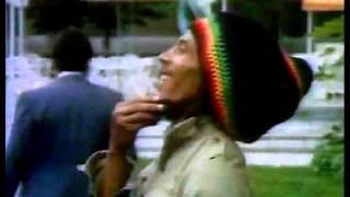 Bob Marley - Rare Instrumental (1979)
