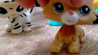 Lps- little Pet Shop ( Первое видео)