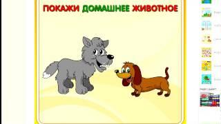 Домашние и дикие животные  Обучающее видео для детей