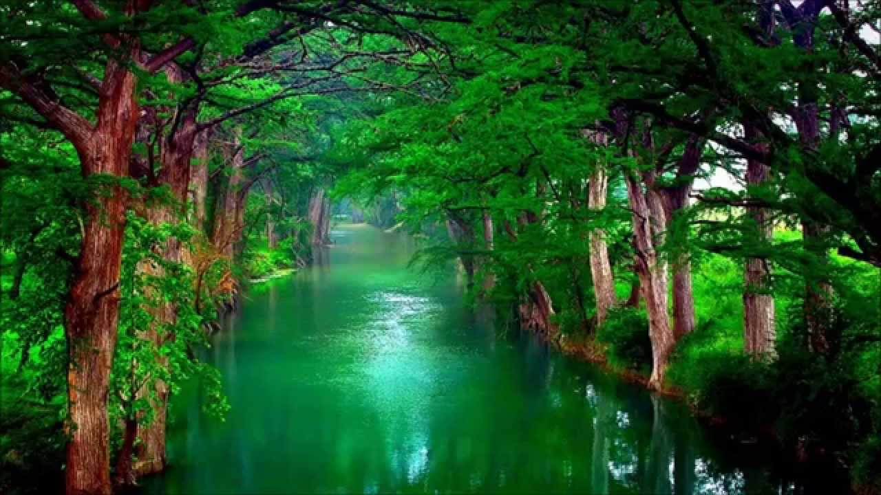 Image result for soothing images