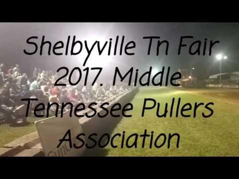 MTPA Shelbyville Tn Fair 2017