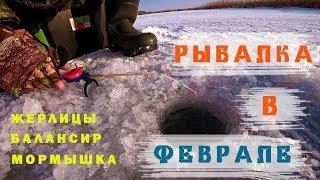 Зимняя рыбалка 2020 поймал щуку на балансир жерлицы мормышка открыл зимний сезон в феврале
