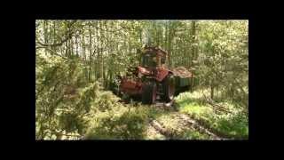 Volvo BM2654 drar tungt lass i skogen