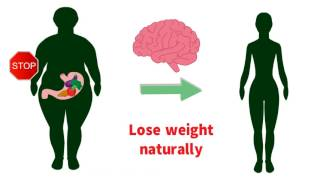 Natural Weight Loss Without Exercise - UrbanMind Singapore