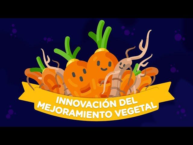 Innovación del Mejoramiento Vegetal ¿Qué es? y ¿Cómo puede beneficiarnos?