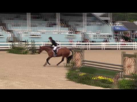 Video of A Million Reasons ridden by SCOTT STEWART from Net!