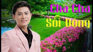 Cha Cha Sôi Động Toàn Ca Khúc Hay | Áo Mới Cà Mau - Nguyễn Thành Viên