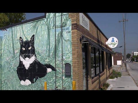 Hot Coffee and Cool Cats and More | Nebraska Stories | NET Nebraska