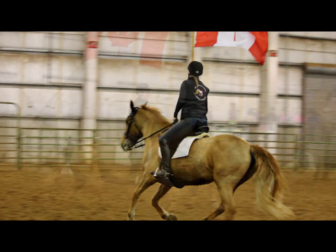 Northwest Horse Fair & Expo 2017 Canadian Horse Breed Showcase & Color-guard Presentation
