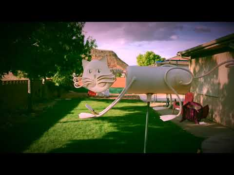 A Garden Cat Documentary