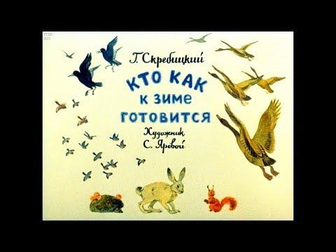 Диафильм Г.Скребицкий - Кто как к зиме готовится