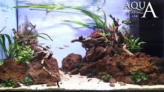 Aquascaping Lab - Tutorial Natural Aquarium Volcanic rocks