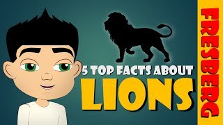 Top 5 Fun Facts about Lions for Children! (Animals for Kids Educational Videos)