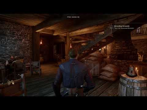 Dragon Age™: Inquisition episode: 29 more chatting and fights