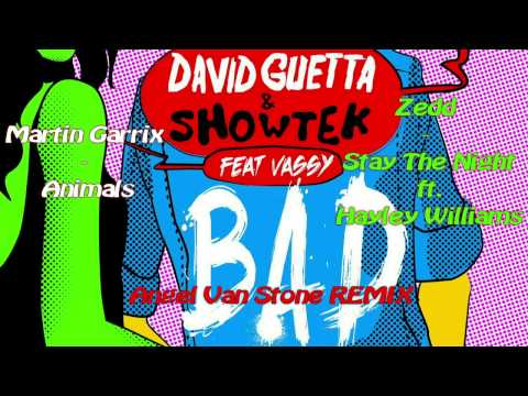 David Guetta, Showtek, Martin Garrix, Zedd ft Hayley Williams -  Bad, Animals, Stay the Night
