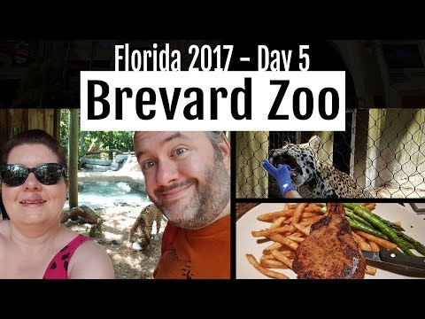 Florida 2017 : Day 5 - Brevard Zoo, Celebration, BJ's Brewhouse