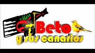 beto y sus canarios mix