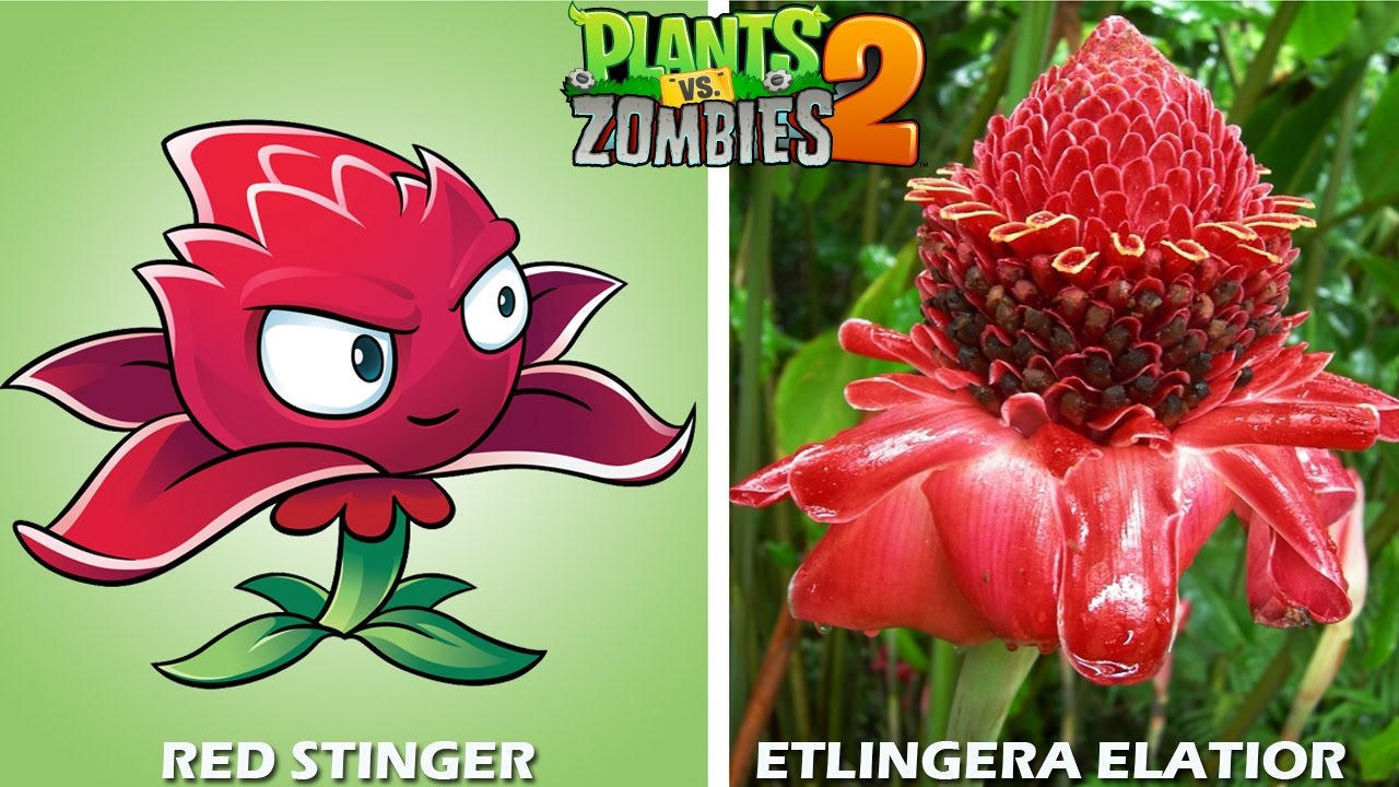 Plants Vs Zombies 2 Characters In Real Life Youtube