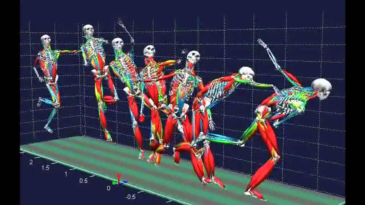 Biomechanical analysis - YouTube