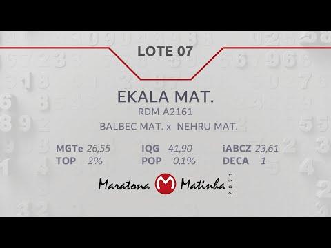 LOTE 07 Maratona Matinha