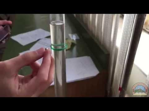 Viscosity Experiment (Kurdish)
