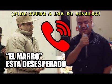 """Acorralado, """"El Marro"""" súplica apoyo del Cartel de Sinaloa"""