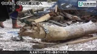 ベンツ特殊車両「ウニモグ」「ゼトロス」被災地へ!/ Zetros in Tohoku