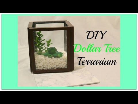 DIY Dollar Tree Terrarium