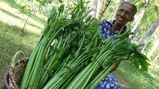 Lasia shoots ❤ Cooking Healthy Food in my Village by Grandma   Village Life