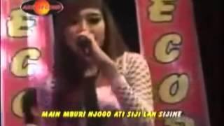 Nella Kharisma - Rencho Om Lagista Dangdut Koplo regae Terbaru 2016