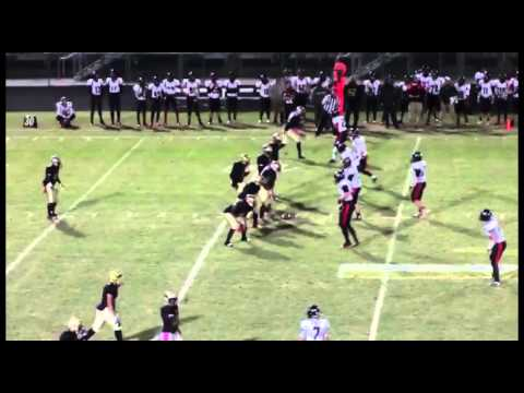 Salem vs. Flowery Branch Highlights
