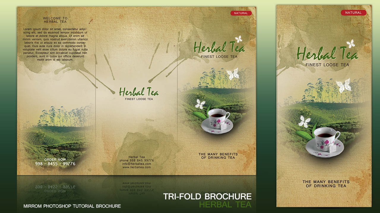 How To Design a Tri Fold Brochure Cover In Photoshop  YouTube