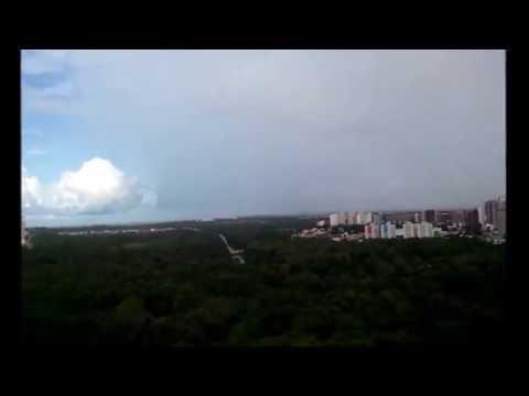 Sol e chuva - Casamento da raposa - Parque Ecológico do Cocó - luciano hortencio