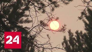 Климатические взрывы: изменения планетарного масштаба - Россия 24