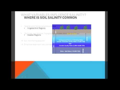 Water Quality ENGG*3590 Soil Salinization Video