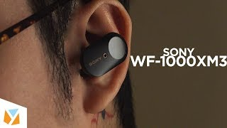 Video-Search for sony wf 1000X m3