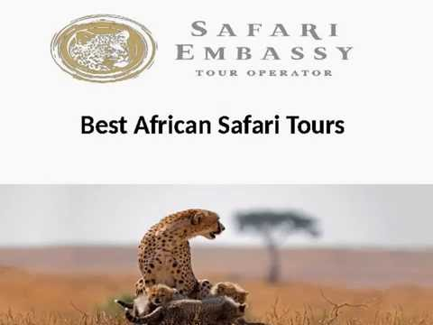 African safari tours in Botswana