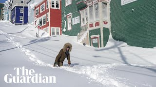 Blizzards and storms strike Newfoundland