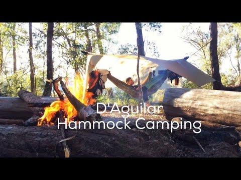 D'Aguilar Hammock Camping