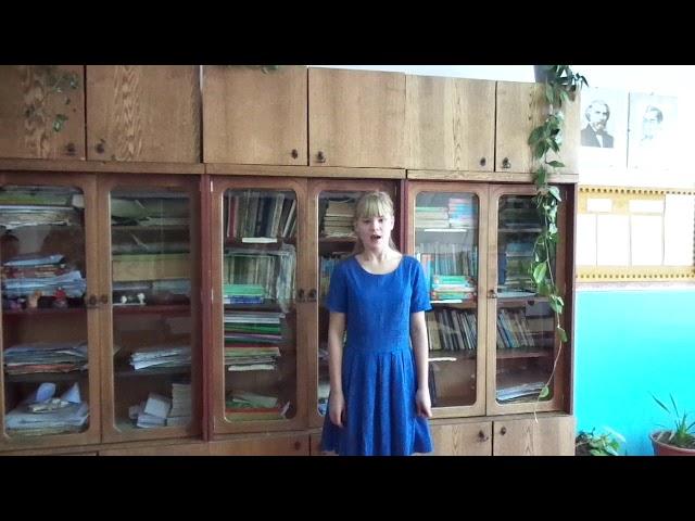 Изображение предпросмотра прочтения – ДарьяЗаблоцкая читает произведение «Летний вечер» А.А.Блока