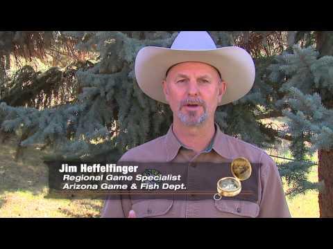 British Columbia Whitetail Deer Hunting