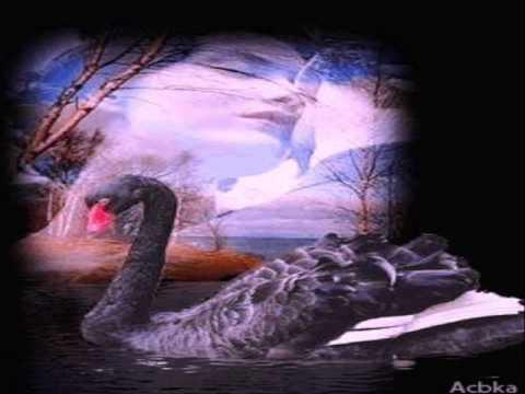 ♥`*• ¸¸ •*´ ♥Hamara Haal Hum Kiya Batain♥`*• ¸¸ •*´ ♥ romantic song
