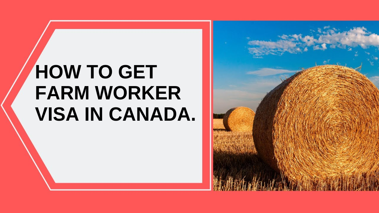 How To Get Canada Farm Worker Visa: Agricultural workers