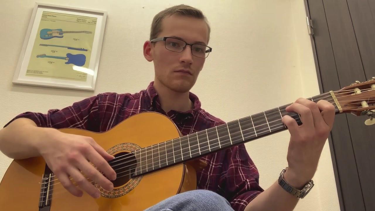 Aaron Plays Flamenco Guitar