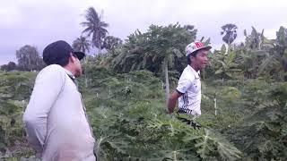 แม้แต่ขาขาด ก็ยังสู้ อุปสรรคไม่ใช่ปัญหา เกษตรไทยใจสู้