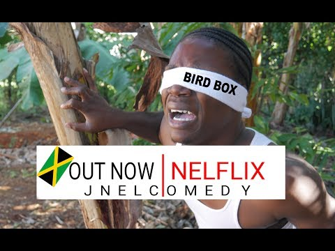 Netflix Urges Viewers Not To Take Part In The Bird Box Challenge